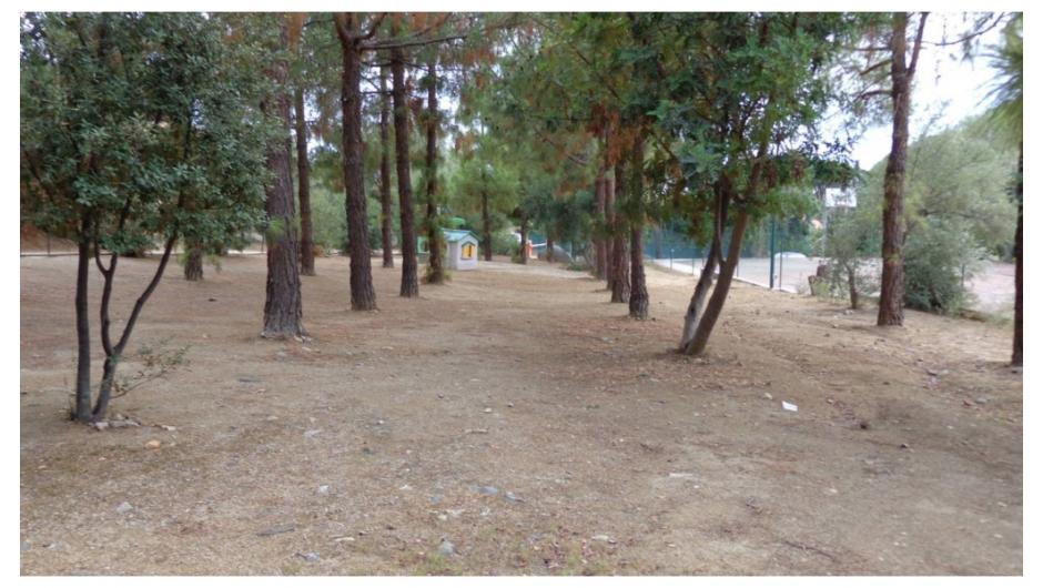 60 parco villaggio