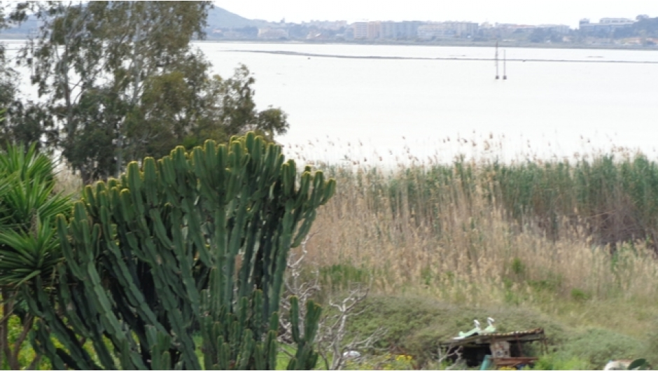vista terrazza2